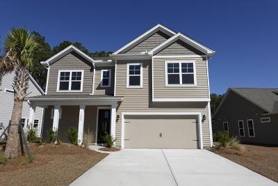 Johns Island Single Family Home For Sale: 1249 Hammrick Lane