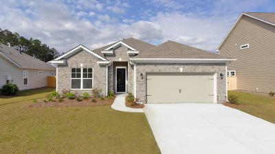 Johns Island SC Single Family Home For Sale: $359,899