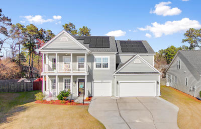 Summerville Single Family Home For Sale: 155 Back Tee Circle