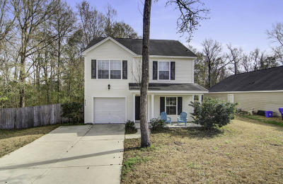 North Charleston Single Family Home For Sale: 8736 Hayden Glenn Drive