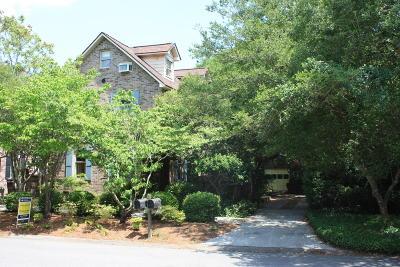 Charleston County Single Family Home For Sale: 1034 Loyalist Lane