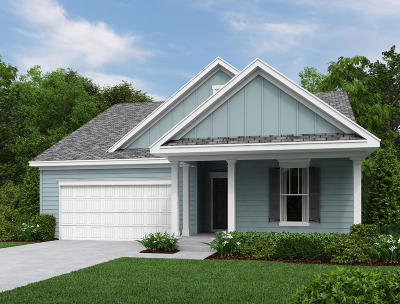 Johns Island Single Family Home Contingent: 1406 Black Maple Way