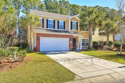 Berkeley County Single Family Home For Sale: 208 Nelliefield Creek Drive