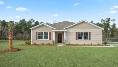 Berkeley County, Charleston County, Dorchester County Single Family Home For Sale: 598 Wayton Circle