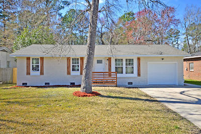 Goose Creek Single Family Home For Sale: 147 Pandora Drive