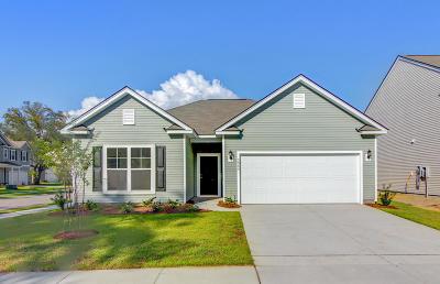 Summerville Single Family Home For Sale: 467 Sanctuary Park Drive