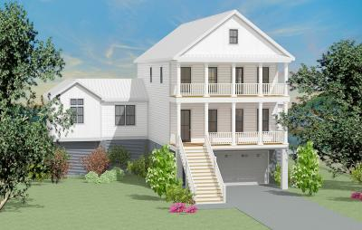Single Family Home For Sale: 217 Marsh Oaks Drive