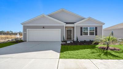Moncks Corner Single Family Home For Sale: 436 Buckhannon Lane