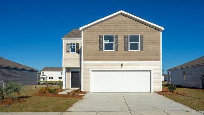 Moncks Corner Single Family Home For Sale: 435 Buckhannon Lane