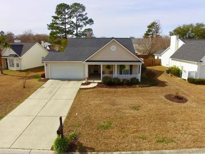 Charleston County Single Family Home For Sale: 527 Carters Grove Road