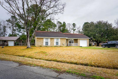 Berkeley County Single Family Home For Sale: 1233 St Johns Avenue