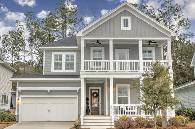 Mount Pleasant Single Family Home For Sale: 3793 Maidstone Drive