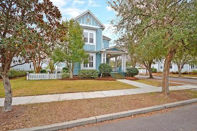 Summerville Single Family Home For Sale: 217 Hydrangea Street