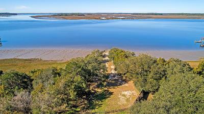 Charleston County Residential Lots & Land For Sale: 35 Josie Ridge Road