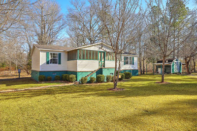 Berkeley County Single Family Home For Sale: 1065 Millwood Loop