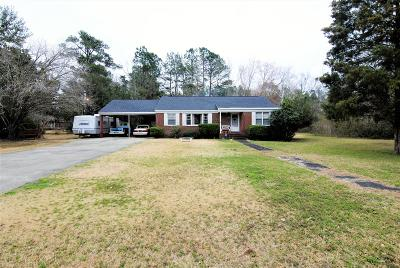 Berkeley County Single Family Home For Sale: 129 Venning Street