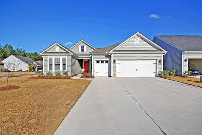 Summerville SC Single Family Home For Sale: $375,000
