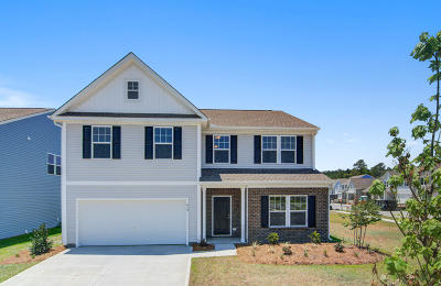 Summerville Single Family Home For Sale: 419 Snowy Plover Lane #107