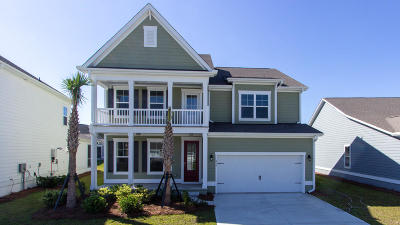 Summerville SC Single Family Home For Sale: $470,350