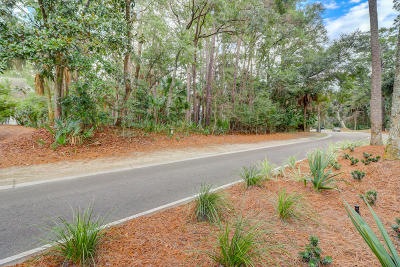 Residential Lots & Land For Sale: 2617 Seabrook Island Road