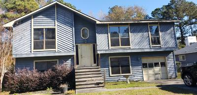 Summerville Single Family Home For Sale: 113 Bradd Street