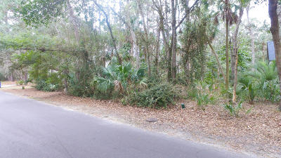Charleston County Residential Lots & Land For Sale: 2747 Old Oak Walk