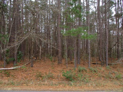 Summerville Residential Lots & Land Contingent: 110 Kimberwicke Drive
