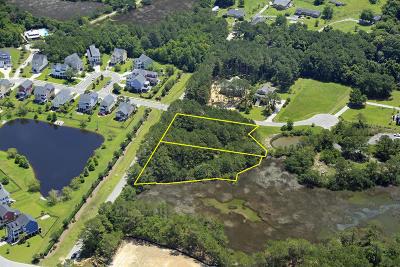 Charleston Residential Lots & Land For Sale: Feldman Court