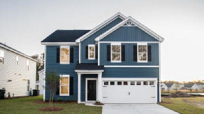 Johns Island Single Family Home For Sale: 2946 Fontana Street