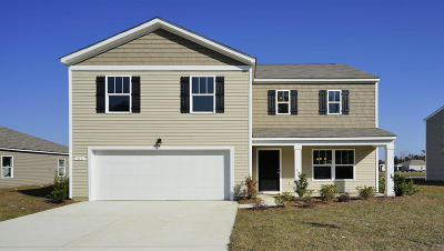 Berkeley County, Charleston County, Colleton County, Dorchester County Single Family Home For Sale: 428 Buckhannon Lane