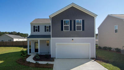 Berkeley County, Charleston County, Colleton County, Dorchester County Single Family Home For Sale: 430 Buckhannon Lane