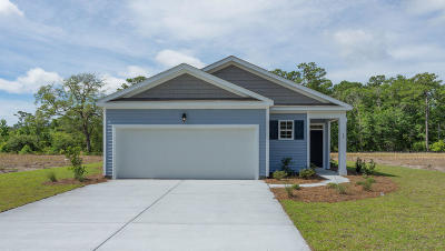 Berkeley County, Charleston County, Colleton County, Dorchester County Single Family Home For Sale: 432 Buckhannon Lane