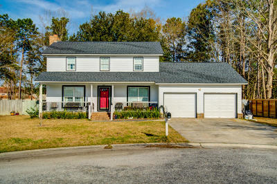 Goose Creek Single Family Home For Sale: 12 Chelsea Court