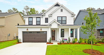 Moncks Corner SC Single Family Home For Sale: $344,045