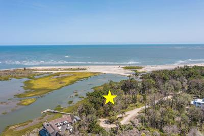 Dewees Island Residential Lots & Land For Sale: 429 Pelican Flight Dr Lot 45