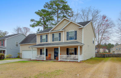 Berkeley County, Charleston County, Dorchester County, Colleton Single Family Home For Sale: 247 Eagle Ridge Road