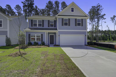 Summerville Single Family Home For Sale: 271 Dunlin Drive #178
