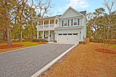 Johns Island Single Family Home For Sale: 2107 Nicholas David Path
