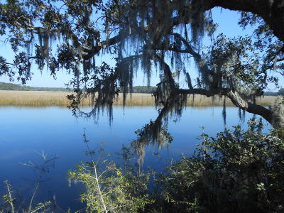 Edisto Island Single Family Home For Sale: 8260 Crooked Creek Lane