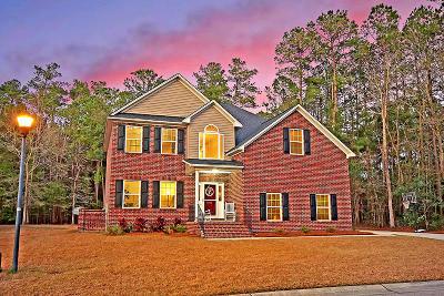 North Charleston Single Family Home For Sale: 8773 Alexandria Drive