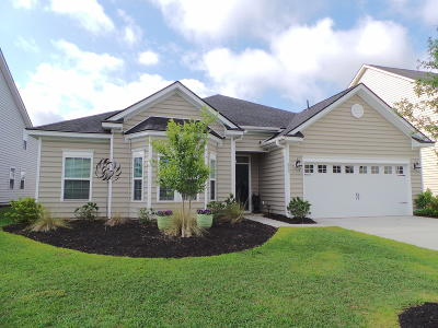 Summerville Single Family Home For Sale: 219 Lindera Preserve Boulevard