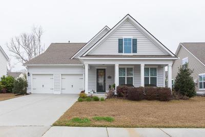 Harbor Woods Single Family Home For Sale: 1038 Harbortowne Road