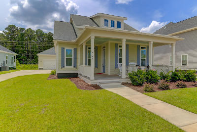 Charleston County Single Family Home For Sale: 4146 Home Town Lane