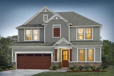 Moncks Corner Single Family Home Contingent: 207 Whirlaway Drive