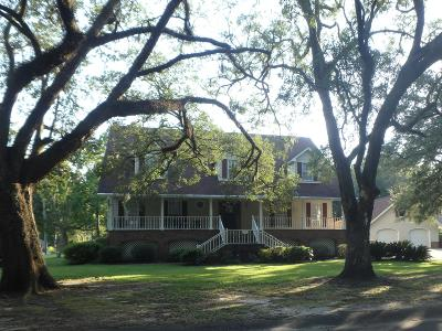 Goose Creek Single Family Home For Sale: 117 The Oaks Avenue