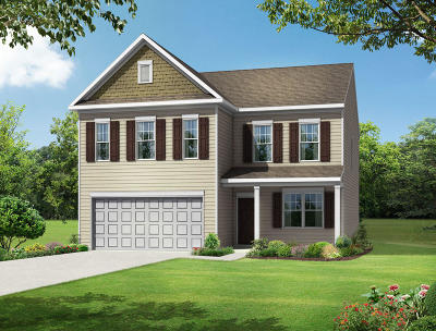 Moncks Corner Single Family Home For Sale: 117 Lakelyn Road
