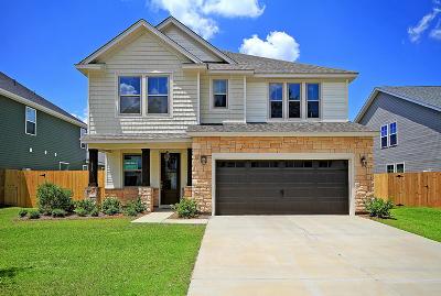 Moncks Corner Single Family Home For Sale: 210 Whirlaway Drive