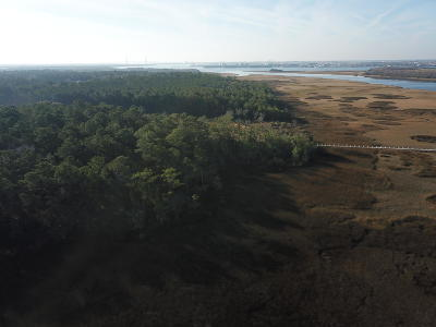 Charleston Residential Lots & Land For Sale: Clements Ferry Road