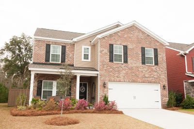 Single Family Home For Sale: 1023 Banker Court