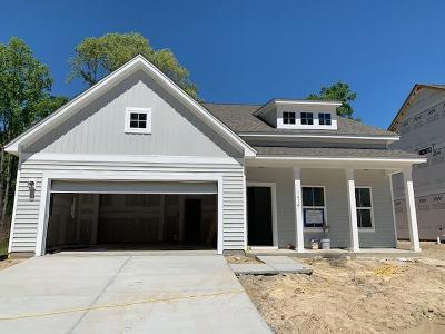 Johns Island Single Family Home For Sale: 1414 Black Maple Way